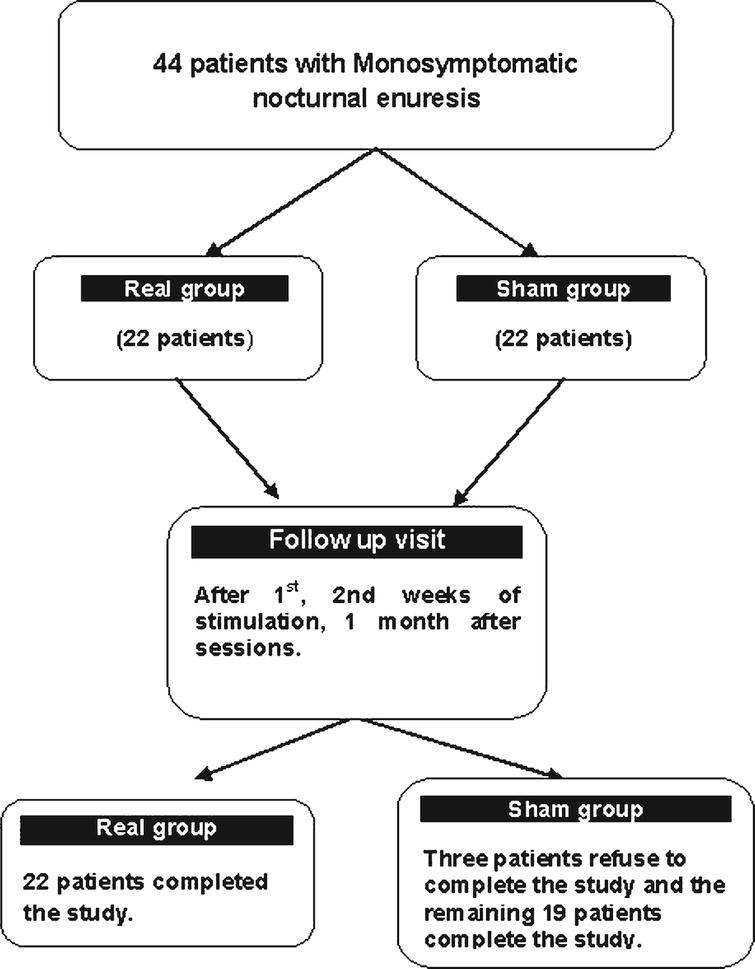 Flow chart of the patients through the course of the study.