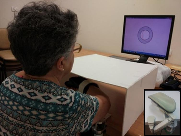 The experimental setup. The participant places her forearm on the armrest, below an opaque cover. She uses the movements of her forearm to control a cursor on a phase plane, displayed on a computer screen. The target zone in which the participant is instructed to keep the cursor is shown in gray. The red trace shows the amplitude (on the horizontal axis) and the speed (on the vertical axis) of the participant's actual movement. Inset: the arm rest. Written approval for use of this picture for publication was obtained from the person photographed.