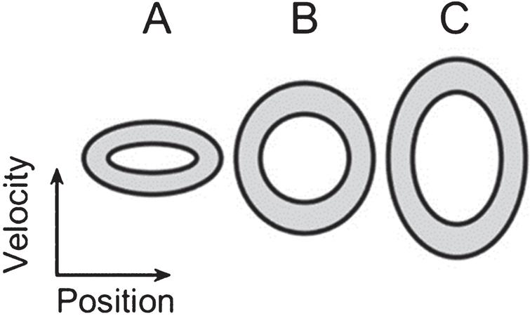 Target ellipses. An illustration of the relative size of the three ellipses shown on the phase plane during both the training session and the exercise session (A, B, and C, from left to right). The zone within which participants were instructed to keep the cursor is marked in gray. The vertical axis denotes velocity and the horizontal one denotes position.