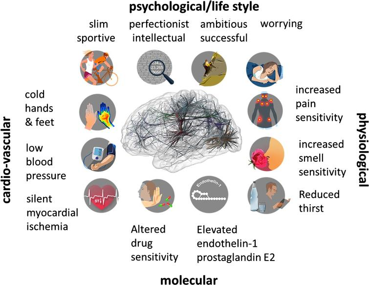 """Emotional stress and the """"Flammer Syndrome"""". The term Flammer Syndrome (FS) describes a phenotype characterized by the presence of primary vascular dysregulation with a cluster of additional symptoms and signs. Symptoms and signs include the following: prolonged sleep onset time, prolonged blood flow cessation in the finger capillaries after cooling, disturbed autoregulation of ocular blood flow, increased prevalence of optic disc hemorrhages and activated retinal astrocytes, increased retinal venous pressure, increased stiffness of retinal vessels, higher spatial irregularities in retinal vessels, increased resistance in retroocular vessels, increased oxidative stress, altered gene expression as measured in lymphocytes, and altered activity of the autonomic nervous system (beat-to-beat variations of the heart)."""