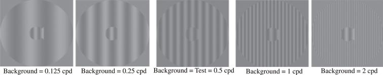 """Sample patterns at Complexity Level 1 for a background two octaves lower in spatial frequency than the test frequency, one octave lower in spatial frequency than the test frequency, equal in spatial frequency to the test frequency, one octave higher in spatial frequency than the test frequency, and two octaves higher in spatial frequency than the 0.5 cyc/deg """"fish shaped"""" test pattern. This same set of backgrounds was presented in this order for each of the 4 test spatial frequencies."""