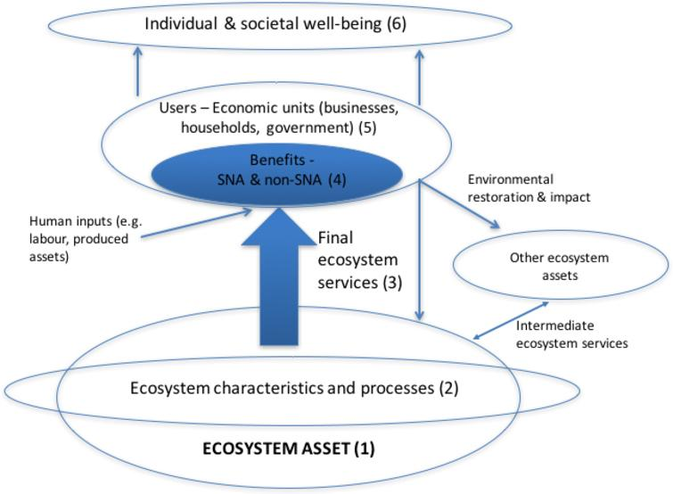 The ecosystem accounting framework. Source: Adapted from[24] Figure 2.2.