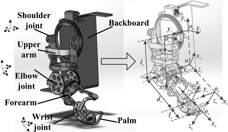 The 6-DOF upper limb exoskeleton model.