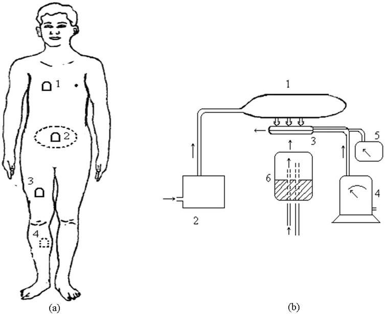 Sketch of the measure of counter pressures on body surface: (a) the four different counter pressure measuring points; (b) the schematic diagram of body surface pressure acquisition system (part 1 is the partial pressure suit, part 2 is the pressure control system, part 3 is the pressure bladder, part 4 is the gas flow meter, part 5 is the piezometer, and part 6 is the body part under the pressure bladder).