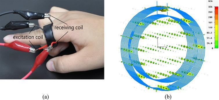 (a) Magnetic induction pulse sensor and (b) Simulation of its operation.