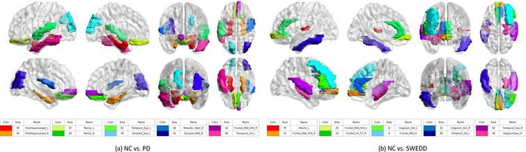 Top 10 discriminative brain regions gained from proposed method for (a) NC vs. PD, and NC vs. SWEDD. Brain regions are color-coded. Moreover, suffix '_L' means left brains, suffix '_R' means right brains, and different colors show different brain regions.