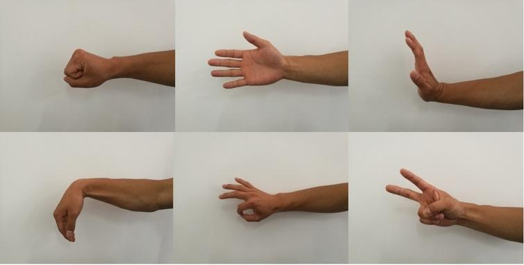 Six hand motions. From left to right and up to down these are HC, HO, WE, WF, OS and VS.