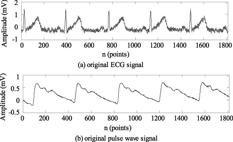 Original ECG and pulse wave signals collected synchronously.
