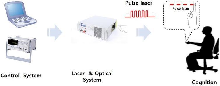 Schematic of laser stimulation procedure.