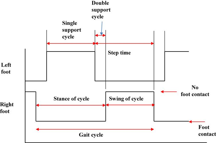 Definition of temporal gait variables during gait cycle.