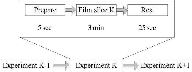 Experiment process.