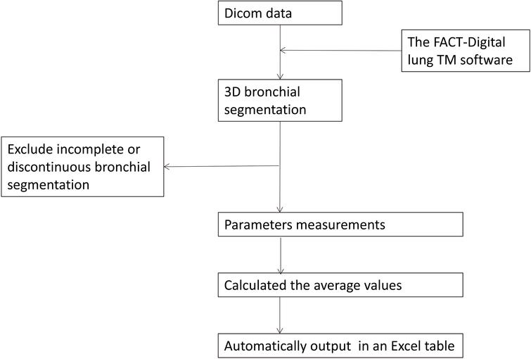 The flow chart of 3D CT quantitative measurements.