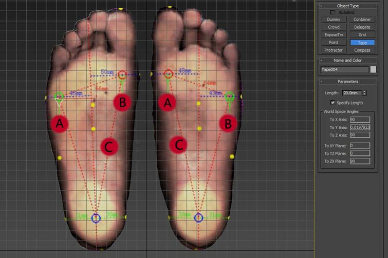 Foot model file (A.max). Points A and B are markers with a vertical distance of 2 cm from the first and fifth metatarsophalangeal joints. Point C is the midpoint of the line that connects the first metatarsophalangeal joint to the center of the heel, which is the marker of the arch height.
