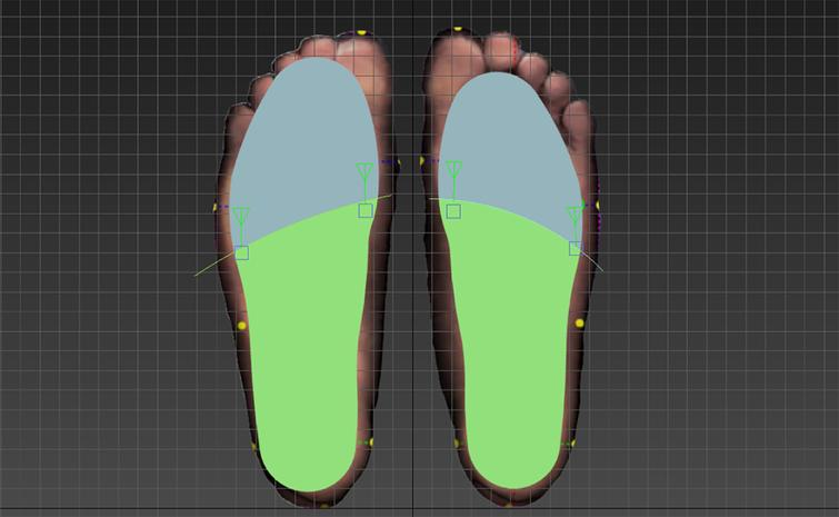 The green area is a 2/3 long foot model area file (D.max).