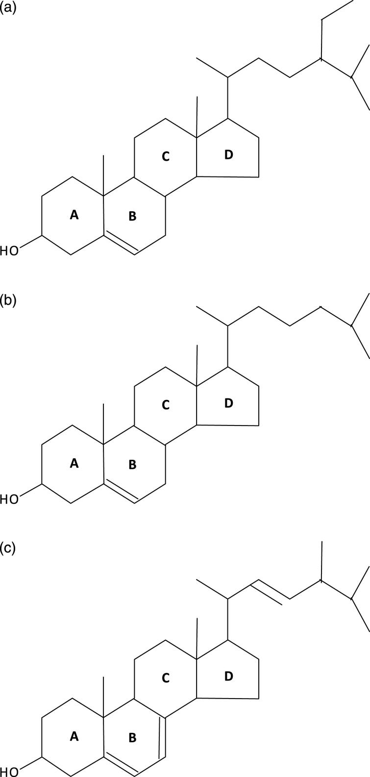 a: Plants synthesize sitosterol (hence, human sitosterolemia). b: Animals: cholesterol; c: Fungi and choanoflagellates: ergosterol, hence, probably had a common ancestor. Modified from Desmond and Gribaldo, 2009.