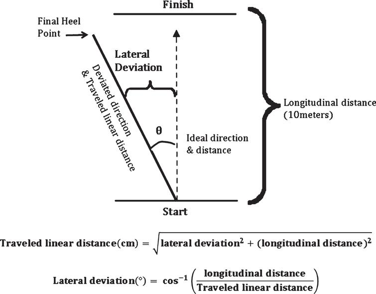 Illustration for measurement of lateral deviation.