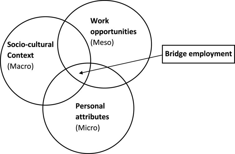 Bridge employment seen from three system levels (Freely from Shultz, 2003).