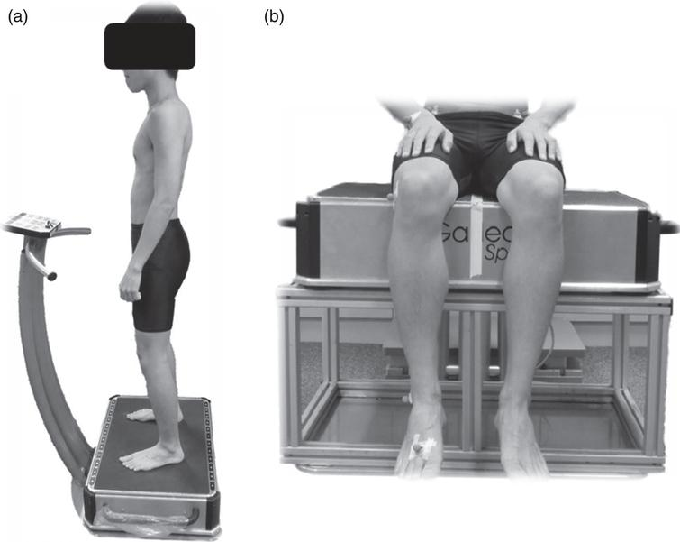 Subject under whole body vibration in (a) standing and (b) seated postures.