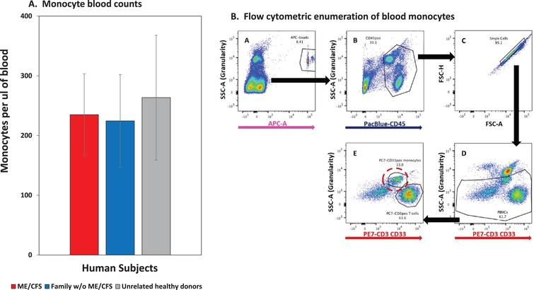 Monocyte blood counts of ME/CFS patients are similar to counts of their family members without ME/CFS and to the counts of unrelated healthy controls. A. Monocytes per ul of blood; average and SD values for families #3, 10 & 28, 16 unaffected family members and 16 unrelated healthy controls. B. Flow cytometric methodology with TruCountR beads for the monocyte blood counts. The blood cells were labeled with a panel of antibodies in tubes containing TruCountR beads, and the cells were analyzed without washing in order to avoid selective cell losses that can be caused by washes to remove unbound antibodies. Each sequential step of cell gating, that was used to detect the beads and the CD33positive & high side scatter monocytes, is indicated by letters with arrows to indicate the cells selected for each sequential gate. The monocytes are circled in dashed red in step E.