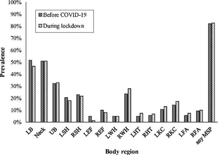 The prevalence of musculoskeletal pain in office workers (n=161) before and during COVID-19 lockdown in different body regions. Legend: LB –low back, UB –upper back, LSH –left shoulder, RSH –right shoulder, LEF –left elbow & forearm, REF –right elbow & forearm, LWH –left wrist & hand, RWH –right wrist & hand, LHT –left hip & thigh, RHT –right hip & thigh, LKC –left knee & calf, RKC –right knee & calf, LFA –left foot & ankle, RFA –right foot & ankle, MSP –musculoskeletal pain.